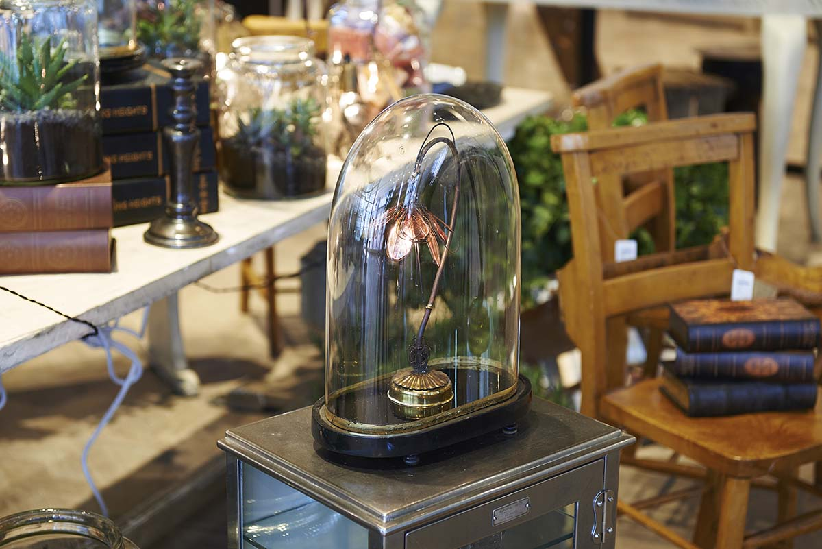Triffid table lamp in a glass dome by Emerald Faerie